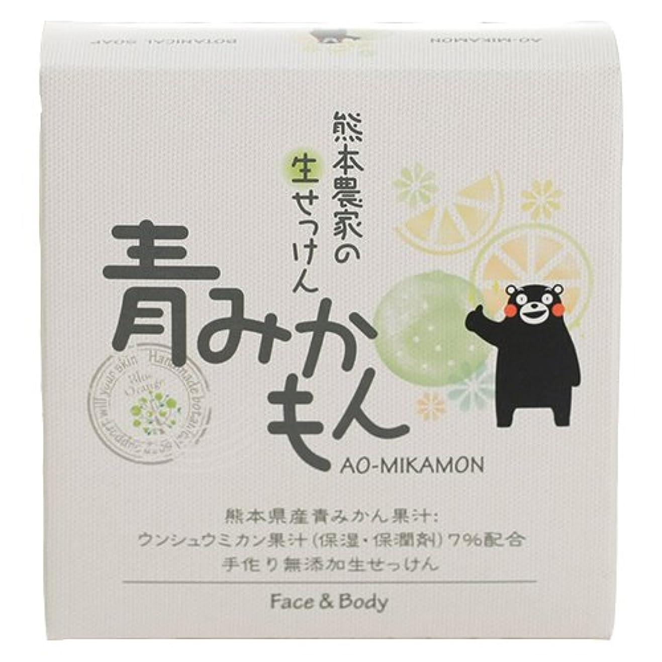 メロン事前両方ゼネラルリンク 熊本農家の生せっけん 青みかもん 80g 石鹸 柑橘系の自然な香り