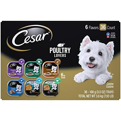 CESAR Soft Wet Dog Food Classic Loaf in Sauce Steak and Chicken Lovers Variety Pack, 6 Flavours - 36 Count