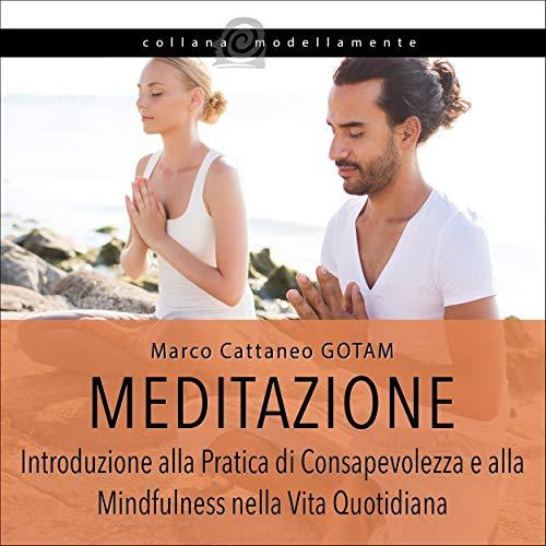Couverture de Meditazione