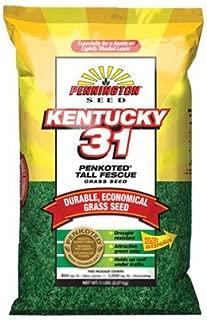 Pennington 100509303 Kentucky 31-Inch Tall Fescue Seed, 25-Pound