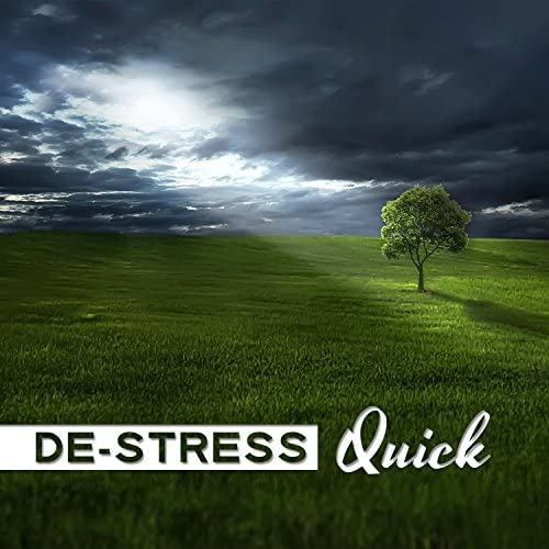 Stress Relief Calm Oasis