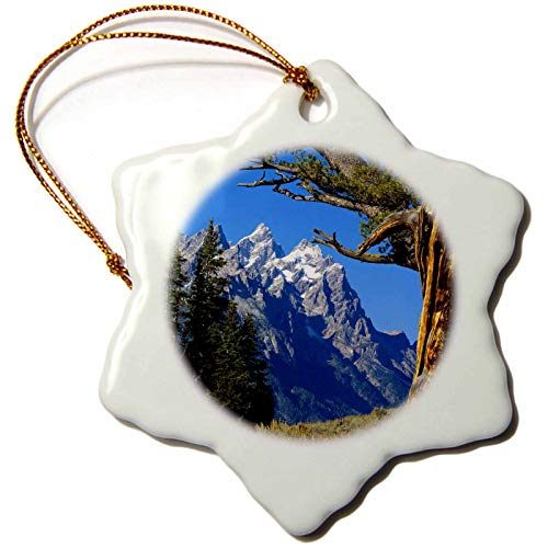 VinMea Snowflake Keepsake Xmas Hanging Ornament, 97228_1 Wyoming, Jackson, Grand Teton Np, Cathedral Group Us51 Bfr0005 Bernard Friel Porcelain Ornament, 3-Inch