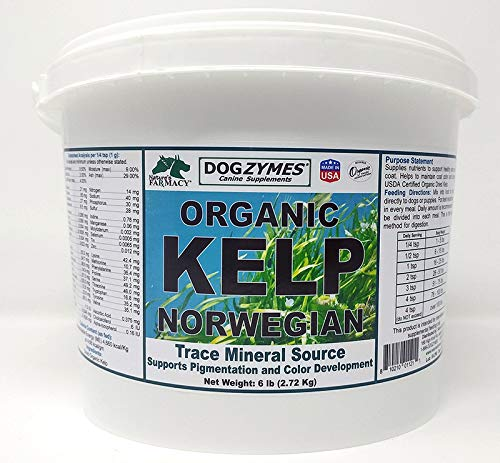 Dogzymes Organic Norwegian Kelp for Pets, a Valuable Nutrition Source Rich in Iodine to Support Gland Function, Especially The Thyroid (6 Pound)