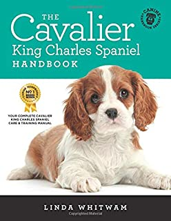 Best gifts for cavalier owners Reviews