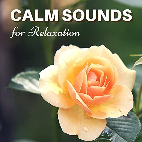 Calm Peace and Relax