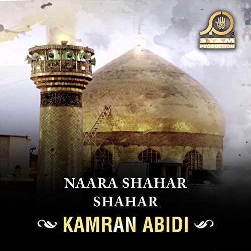 Kamran Abidi