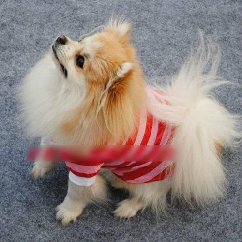 HuntGold 100% design de mode en coton rayé coloré t-shirt pour chien(rouge Taille: M)