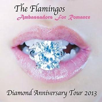 Diamond Anniversary Tour 2013