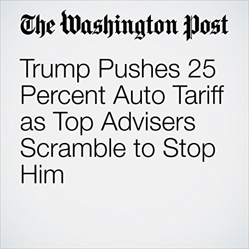 Trump Pushes 25 Percent Auto Tariff as Top Advisers Scramble to Stop Him copertina