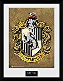 GBeye Collector Print - Harry Potter Hufflepuff,
