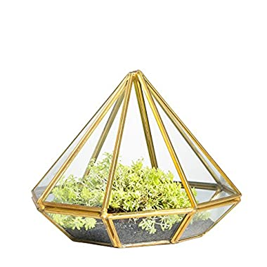 NCYP Handmade Gold Open Glass Geometric Terrarium Brass Diamond Succulent Fern Moss Plant Display Container Balcony Small Planter Indoor Centerpiece for Coffee Table Desk Top Box Without Door