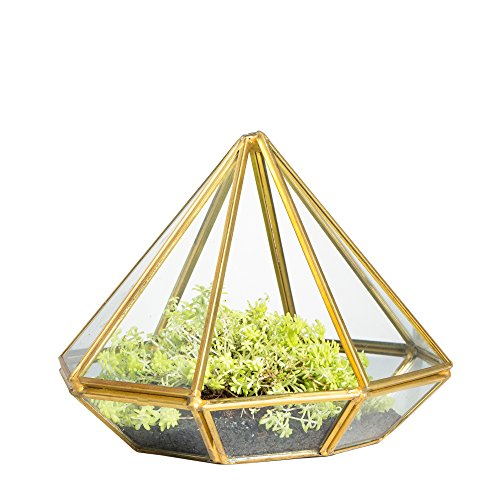NCYP Handmade Gold Open Glass Geometric Terrarium Brass Diamond Succulent Fern Moss Plant Display Container Balcony Small Planter Indoor Centerpiece for Coffee Tabletop Decoration (NO Plants)