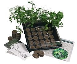 the best indoor herb garden kit I've found