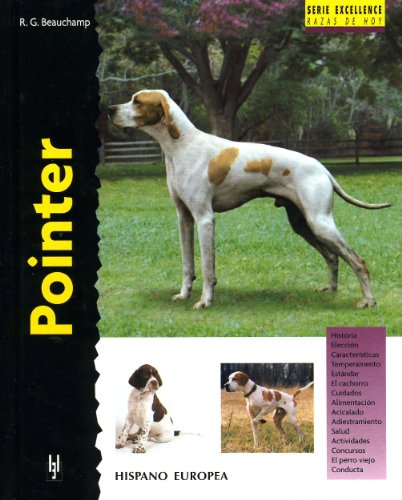 Pointer (Excellence)