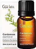 Kardamomöl - Ein süßer Hauch warmer Erleichterung bei Schmerzen (10 ml) - 100% reines Kardamomöl in therapeutischer Qualität
