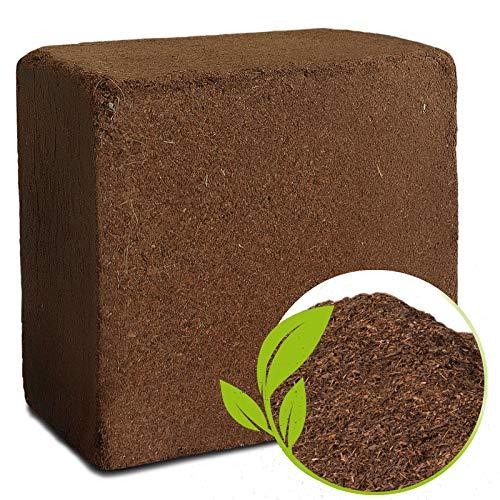 casa pura Fibre de Coco - Substrats Pour Terrariums - Brique de 70L - Sans Tourbe & 100% Naturelle - Terreaux Universel Pour Plantes, Jardin, Reptiles