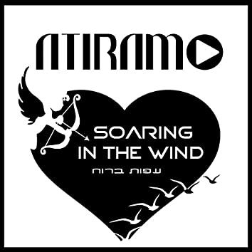 Soaring in the Wind - Single