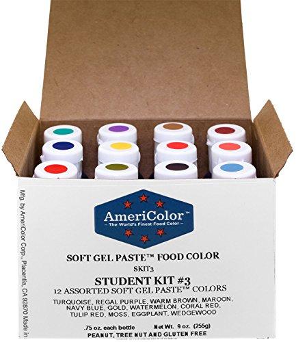 AmeriColor Food Coloring Kit 12 Bottles (.75 Ounce each) Soft Gel Paste Colors