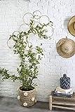 RISEON Boho Vintage DIY 13 PCS Bamboo Wall Trellis Set,Minimalist Plant Display Vertical Garden for Climbing Plants Potted Vines Vegetables Vining Flowers