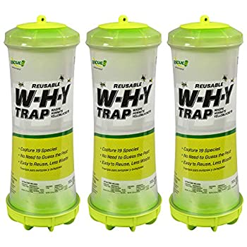 RESCUE! WHY Trap for Wasps Hornets & Yellowjackets – Hanging Outdoor Trap - 3 Traps