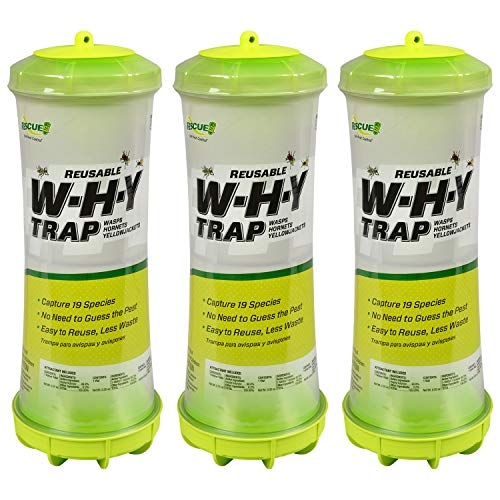 RESCUE! WHY Trap for Wasps, Hornets, & Yellowjackets – Hanging Outdoor Trap - 3 Traps