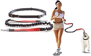Night Reflective Elastic Nylon Breakaway Leashes Running Hand Free Waist Belt Jogging Leads Retractable Leash For Small Pe...