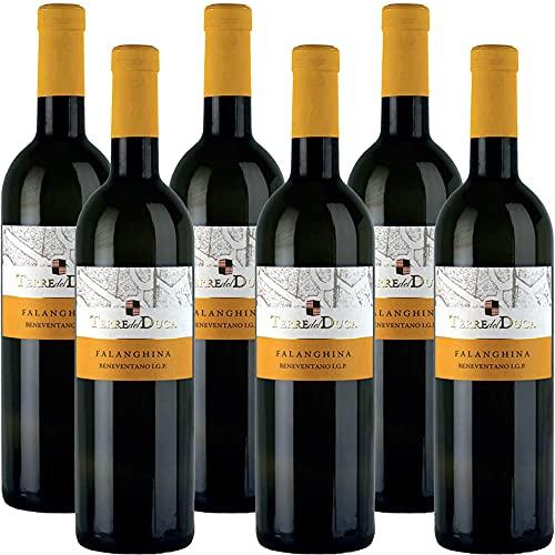 Falanghina del Beneventano Igt | Terre del Duca | Vino Bianco della Campania | 6 Bottiglie 75Cl | Idea Regalo