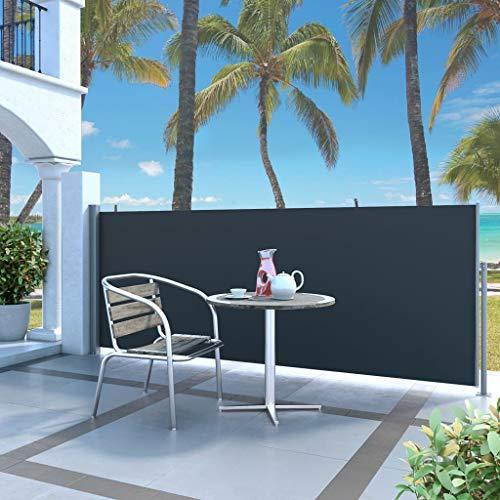 Festnight Toldo Lateral Retráctil de Jardín Resistente a los Rayos UV y Impermeable 120x300 cm Negro