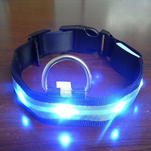 Yosoo Huisdieren hond LED licht flitser nylon LED halsband nacht veiligheid waterdicht verstelbare S-XL, Large, blauw
