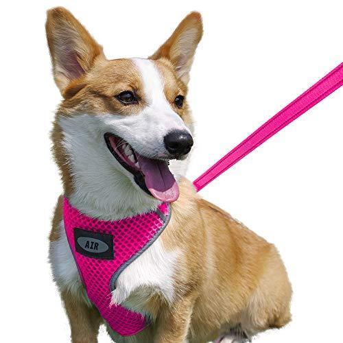 Arnés Perro Cachorro  marca AIR