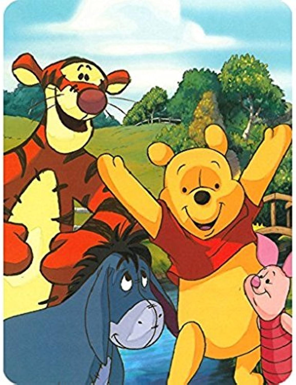 Disney Winnie the Pooh Hunny Dayz Tigger, Eeyore, Pigglet 60x80 Twin Mink Style Blanket