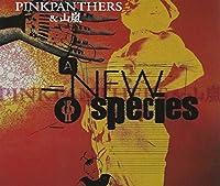 A NEW SPECIES