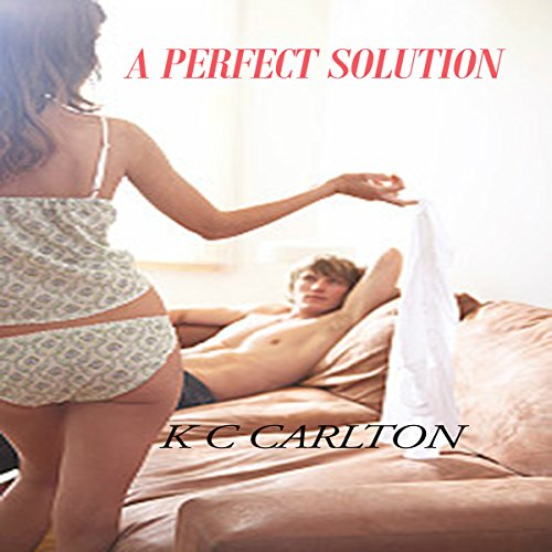 A Perfect Solution audiobook cover art