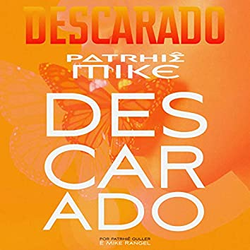 Descarado (Remix)