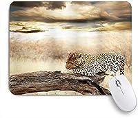 MISCERY マウスパッド サファリヒョウ休憩劇的な曇り空サファリワイルドキャッツ自然画像 高級感 おしゃれ 防水 端ステッチ 耐久性が良い 滑らかな表面 滑り止めゴム底 24cmx20cm