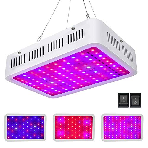 Roleadro Grow Led Coltivazione Indoor 1000W con Veg / Bloom Fuction Lampada Piante Interno con Luces UV IR per Serra Idroponica per Crescita Verdura e Fioritura