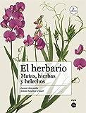 El Herbario (2ª Ed.). matas, Hierbas y Helechos (Biblioteca Universitària)