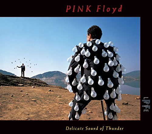 Delicate Sound of Thunder (Live) by Pink Floyd -  Audio CD