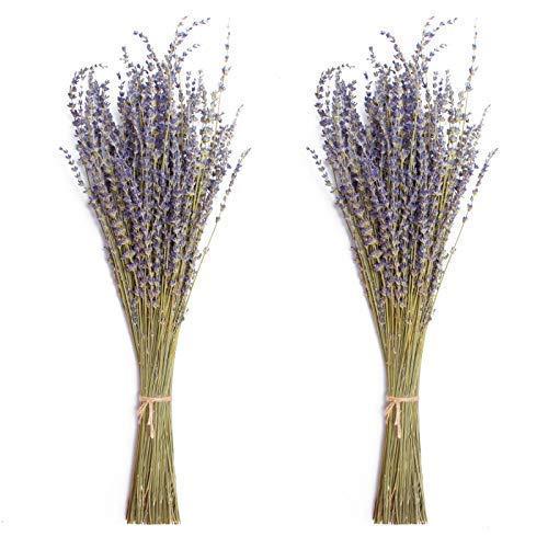 Timoo Dried Lavender Bundles 100% Natural DriedLavenderFlowers for Home Decoration, Photo Props, Home Fragrance, 2 Bundles Pack