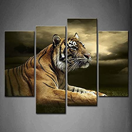 Amazon Com 4 Panel Wall Art Tiger Looking And Sitting Under Dramatic Sky With Clouds Painting Pictures Print On Canvas Animal The Picture For Home Modern Decoration Piece Stretched By Wooden Frame Ready