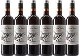 Cuatro Rayas Vino Tinto Roble Organic Tempranillo Ecológico D.O. Rueda - 6...