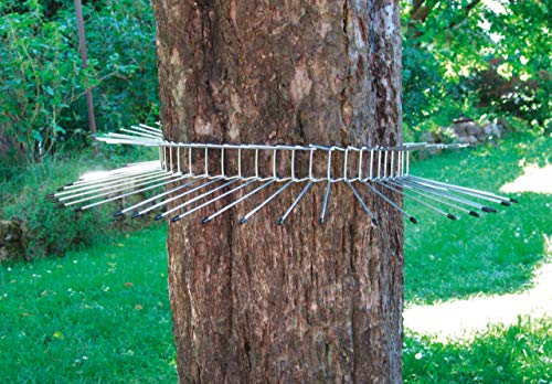 Katzenabwehrgürtel für Bäume bis ca. 115 cm Stammumfang