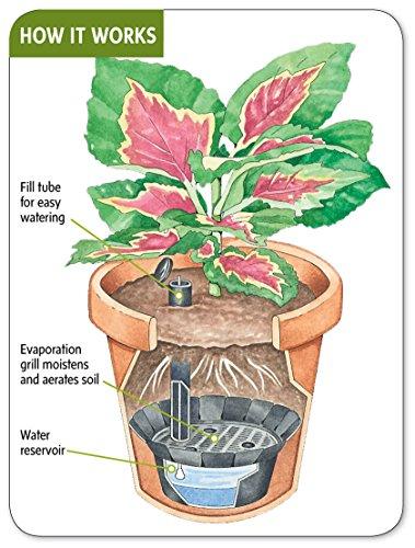 self watering kit
