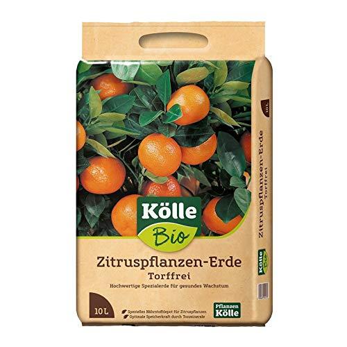 Kölle Bio Zitruspflanzen-Erde Torffrei 10 l
