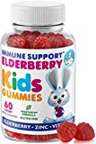 Elderberry Gummies for Kids and Toddlers - Natural Immune System Booster and Health Support with Black Sambucus Elderberries Extract - Vitamin and Zinc Herbal Immunity Boost Supplement for Children