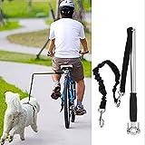 Correa para bicicleta de acero inoxidable, elástica, para perros, manos libres, para perros
