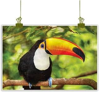 Art Prints and Posters Giclee Canvas Prints Fine Art Poster Jungle Toucan Parrot Rainforest Home Decor Pictures - 23