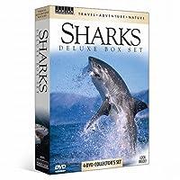 Tan: Sharks [DVD]