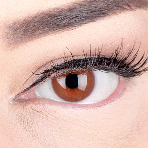 GLAMLENS lentillas de colores marrones Jasmine Choco + contenedor. 1 par (2 piezas) - 90 Días - Sin Graduación - 0.00 dioptrías - blandos - Lentes de contacto marrón de hidrogel de silicona
