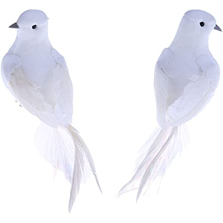 20Pcs Long Tail Doves Realistic Feathered Artificial Animals Wedding Decor